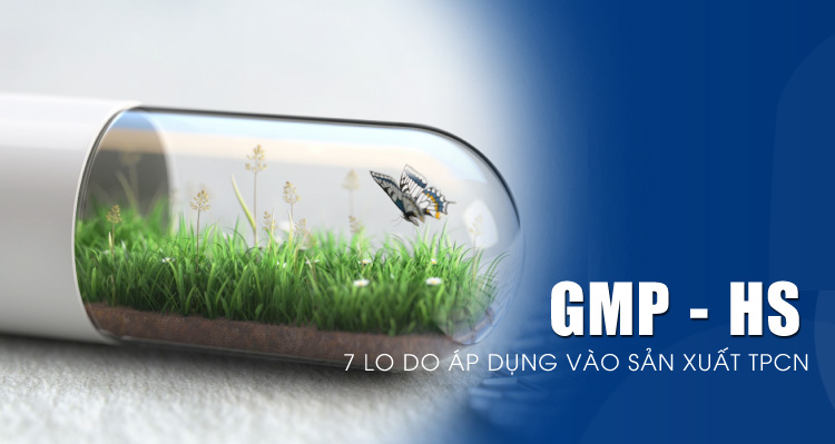 205241434-ly-do-ap-dung-gmp-hs[1]